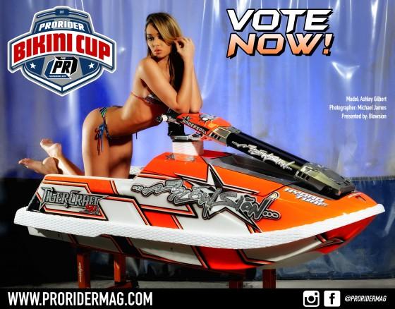 Vote on the 2017 Pro Rider Bikini Cup!